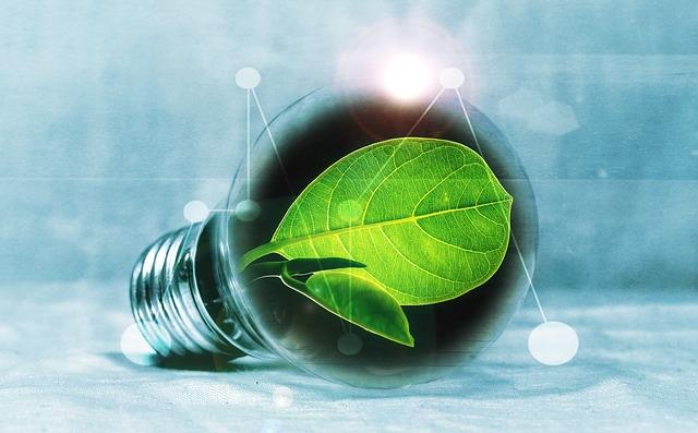 Work Experience di tipo specialistico: Tecnico della Green Economy specializzato in risparmio energetico